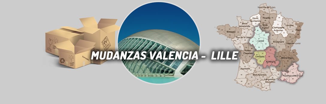 fondo mudanzas valencia lille