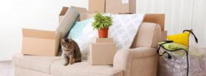 Montaje de muebles en mudanza